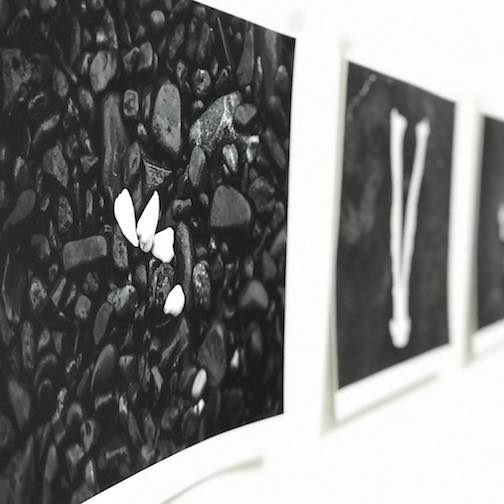 """Patterns in Decay"" series, photographs by Stevie Twining is on exhibit at the Duluth Art Institute."