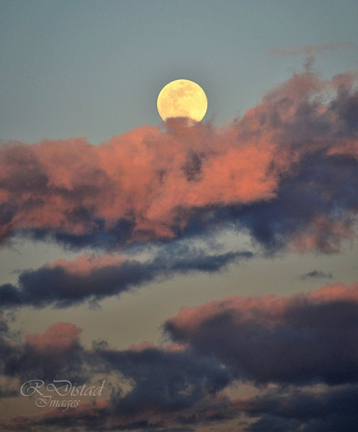 A beautiful full moon and a little bit of sunset by Roxanne Distad.