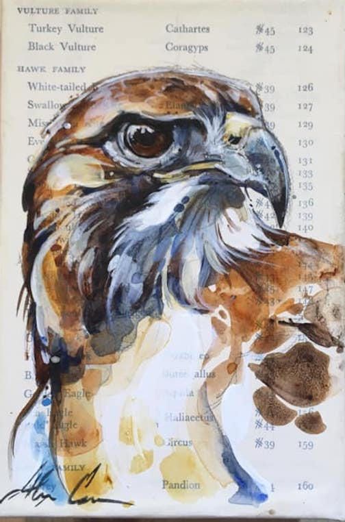 Red-tiled hawk by Alexa Carson is one of the pieces on exhibit at the Johnson Heritage Post.