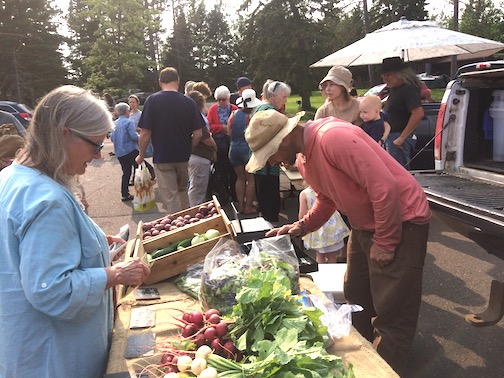 The Thursday Local Food Market opens on Thursday at the Cook County Community Center from 4:30-6 p.m. The market is held every Thursday through Oct. 17.