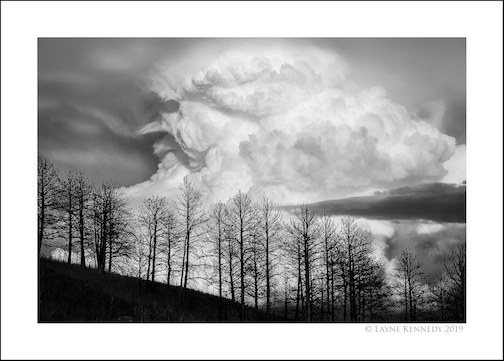 Storm cloud over Custer State Park by Layne Kennedy.