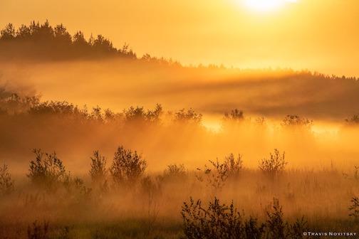 August morning fog by Travis Novitsky.