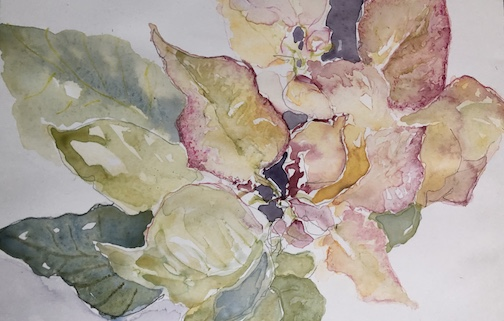 Barbara Meirhusby's December: Study in Rose Cream is at the Art of the Elements Gallery in rural Grand Marais.