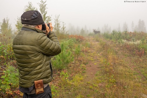 Paul Sundberg starts taking photos of bull moose on a foggy morning. Photo by Travis Novitsky.