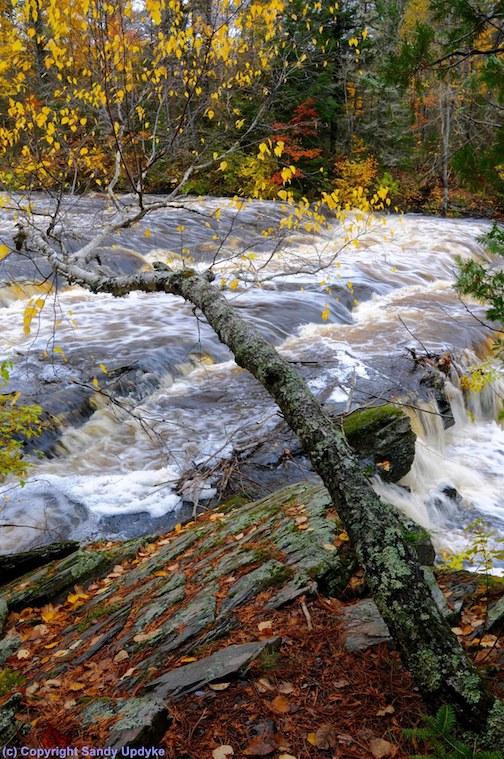 Tibbett Falls by Sandra Updike.
