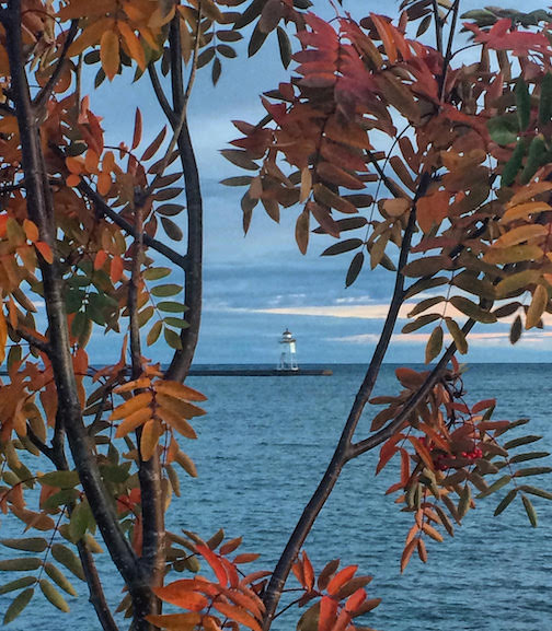 Fall in Grand Marais by Sierra Parsons.