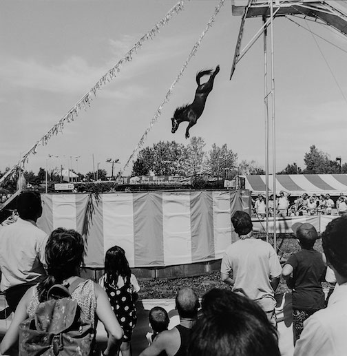 "This photograph fy Toby Old entitled ""Horse Dive Show,"" was taken in 1991. It is in the ""Space: Time and Place"" exhibit currently on view at the Tweed Museum of Art. The exhibit continues through the New Year."