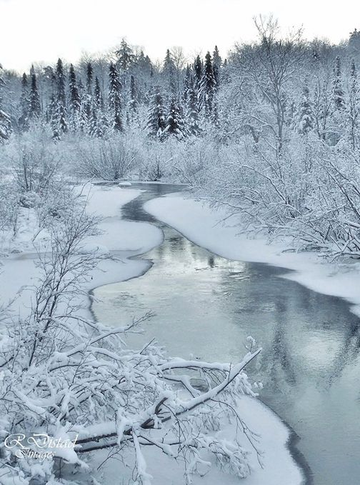 Walking in a winter wonderland by Roxanne Distad.