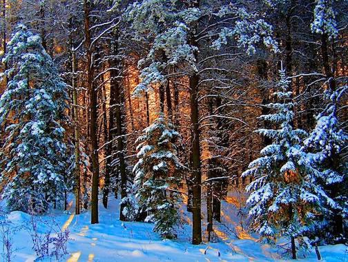 Paul pluskwik winter sunrise in northern Minnesota
