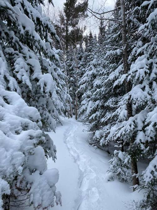 Winter wonderland: more than 45 inches of snow in Lutsen by Judy Sillman.
