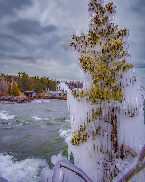 I am always amazed that the trees along the shore survive the cold winters covered in ice by Dustin Lavigne.