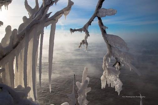 Nature's art by Tim Miodozyniec.