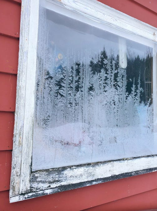 How cool is it that the frost on the window looks like the tree line reflection? by Biz Huss.