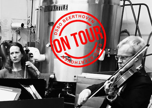 The Duluth-Symphony Orchestra String Quartet will be at Voyaguer Brewing at 6 p.m. on Monday.