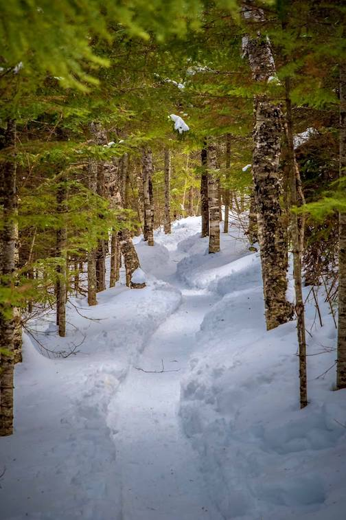 The Superior Hiking Trail -– a 210-mile gem of the North Shore by Dustin Lavigne