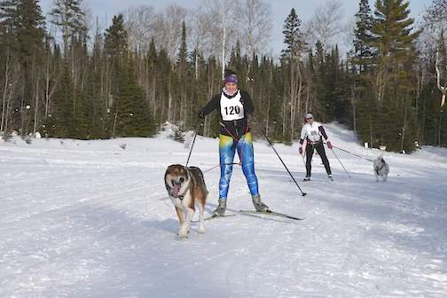 The Best of Snow Skijoring Races will be held on Pincushion Mountain from 2-5 p.m. on Saturday.