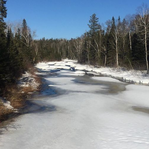 The Rivers are starting to thaw and the birds are returning. Spring is in the air by Dave and Amy Freeman.
