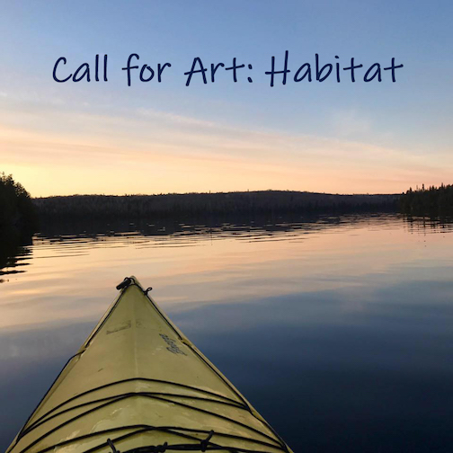The Grand Marais Art Colony has put out a call for artists to create a piece speaking to Habitat.