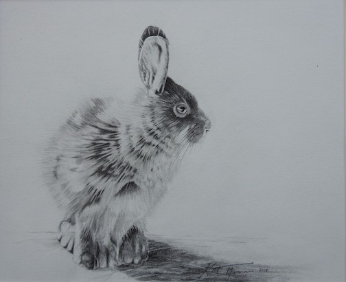 """Good Hare Day"" by Keith Morris."