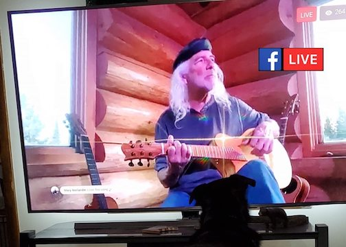Michael Monroe will do a live-stream Log Cabin Concert on Saturday from 7-8:30 p.m.
