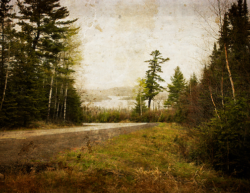 Gunflint Trail by Greg Markstrom.