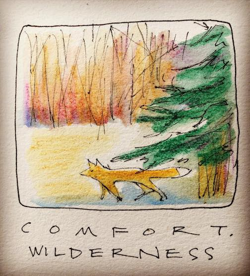 Comfort. Wilderness by Betsy Bowen.
