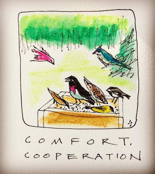 Comfort. Cooperation. All the colors together. By Betsy Bowen.