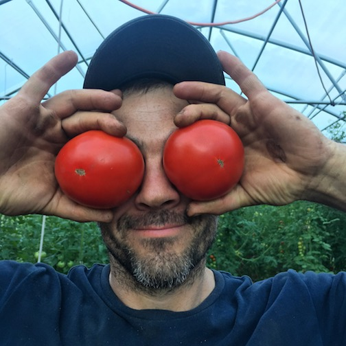 Ian Andrus of Creeking Tree Farms. Tomatoes are ready!