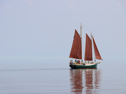 The Hjordis is sailing again. To find out more and book at trip, see the link below.