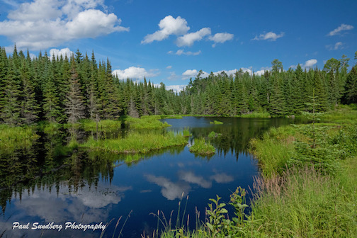 Moose Pond by Paul Sundberg.