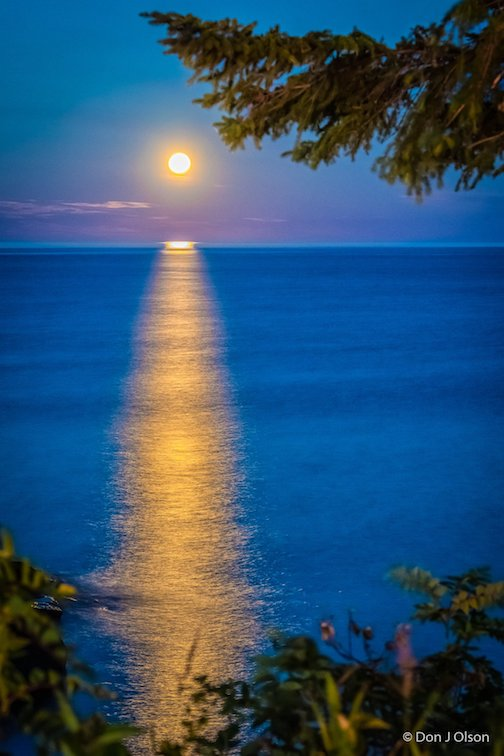 The full Sturgeon Moon by Donald Jay Olson.