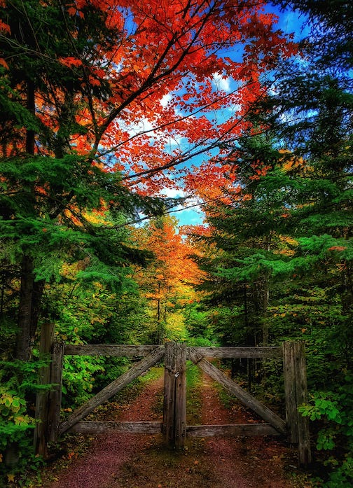 Fall is in the air -- Lutsen Resort by Keith Christensen.
