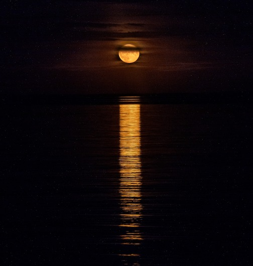 This year's Harvest Moon by Mark Ryan.