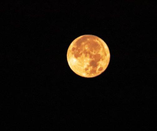 Moon setting at Brighton Beach by Wayne Ortloff.