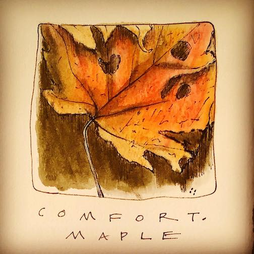 Comfort: Maple Leaf. Now a memory. Covered by show until next year by Betsy Bowen.