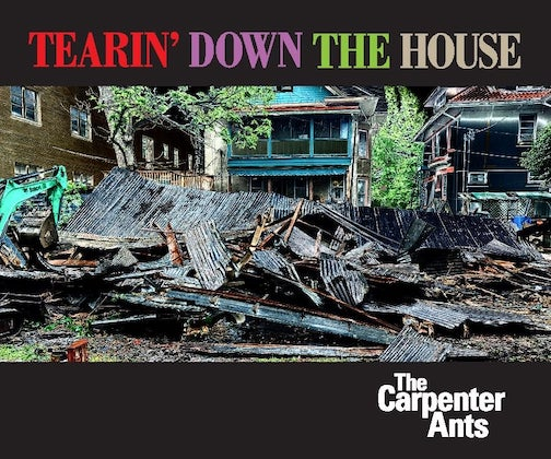 carppenter ants tearin' down the house
