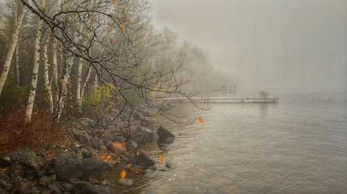 Eerie October at the lake by Don Davison.