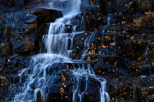 Black and gold and  blue and white at Middle Falls, Gooseberry State Park.