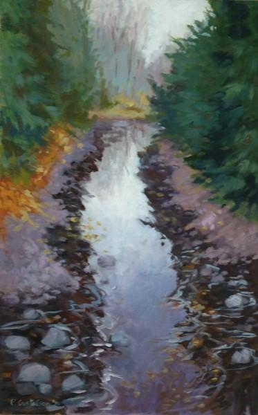 Cool Stream by Paul Gustafson.