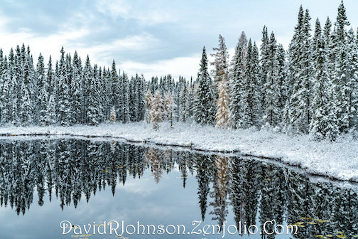 First Snowfall by David Johnson is one of many photographs featured in his exhibit at the Johnson Heritage Post: Cook County Through My Eyes, Vol II. To see, click here.