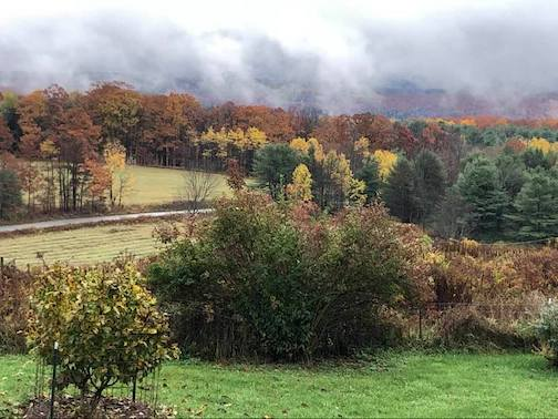 Fog in the valley this morning, upstate New York, by Carla Stetson.