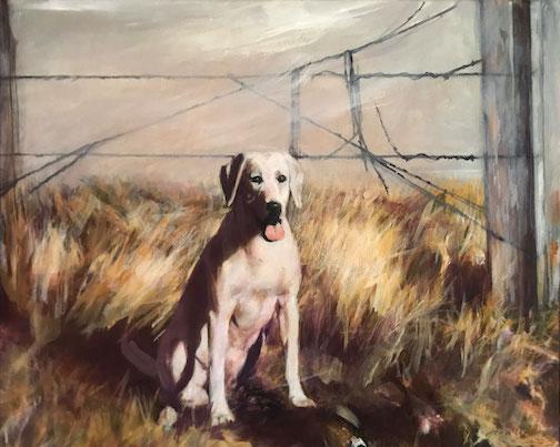 Jan Attridge;'s latest portrait: Branniff.
