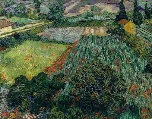 An image you might not have seen before -- a painting by Vincent Van Gogh entitled Mohnfeld. Painted in 1889.