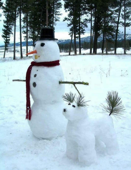Because every snowman needs a puppy dog. Photographer unknown.