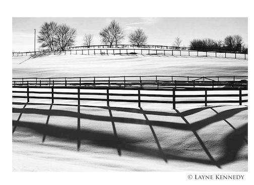 Gotta love that low angle of  winter's sun after a fresh snowfall by Layne Kennedy.