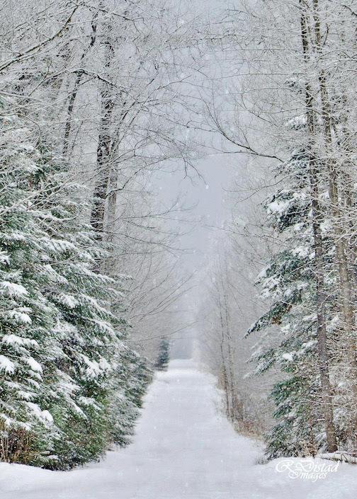 roxanne distad early snowfall