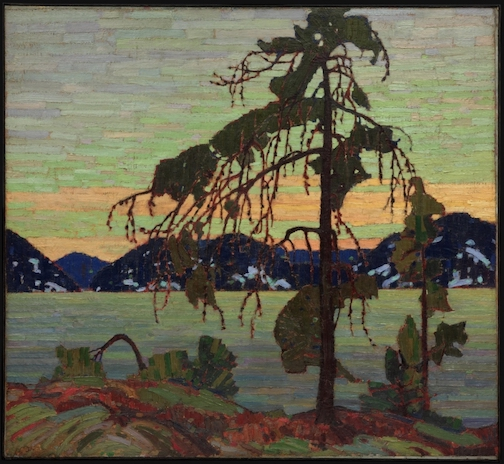 The Jack Pine by Tom Thomson. His work will be discussed online in February.