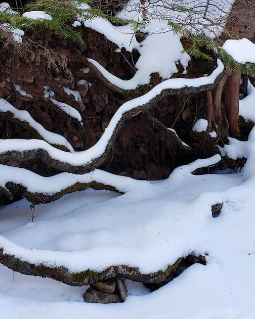 Winter sculpture by Annie Possis.