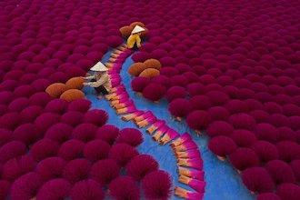 Workers gather incense sticks into bundles at a village near Hanoi, Vietnam. Photograph by Azim Khan Ronnie.