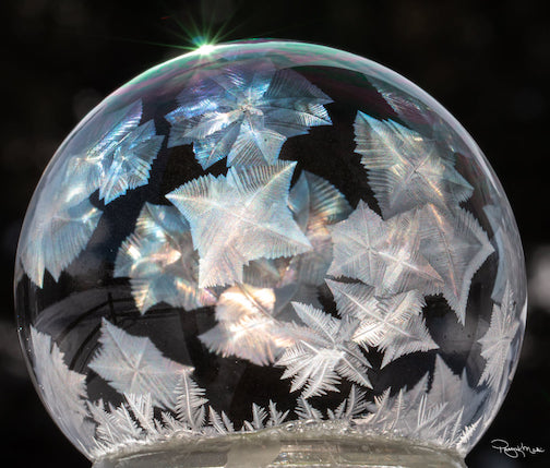 A frozen bubble by Patty Makil